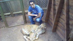 cheetah tubeman