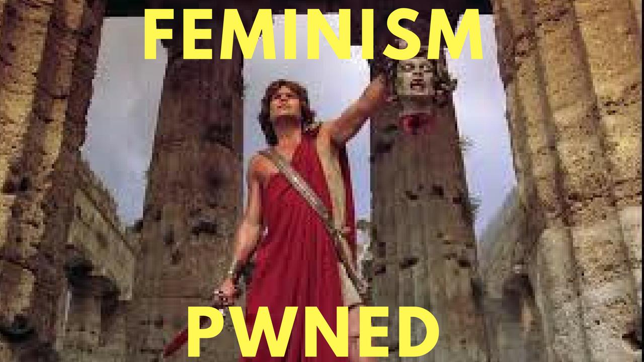 feminism meme pwned